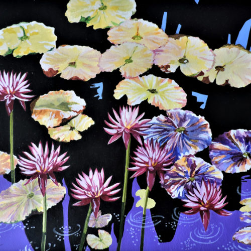 Fairchild Glorious Water Lilies