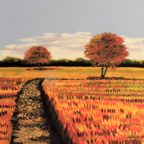 Autumn Country Field