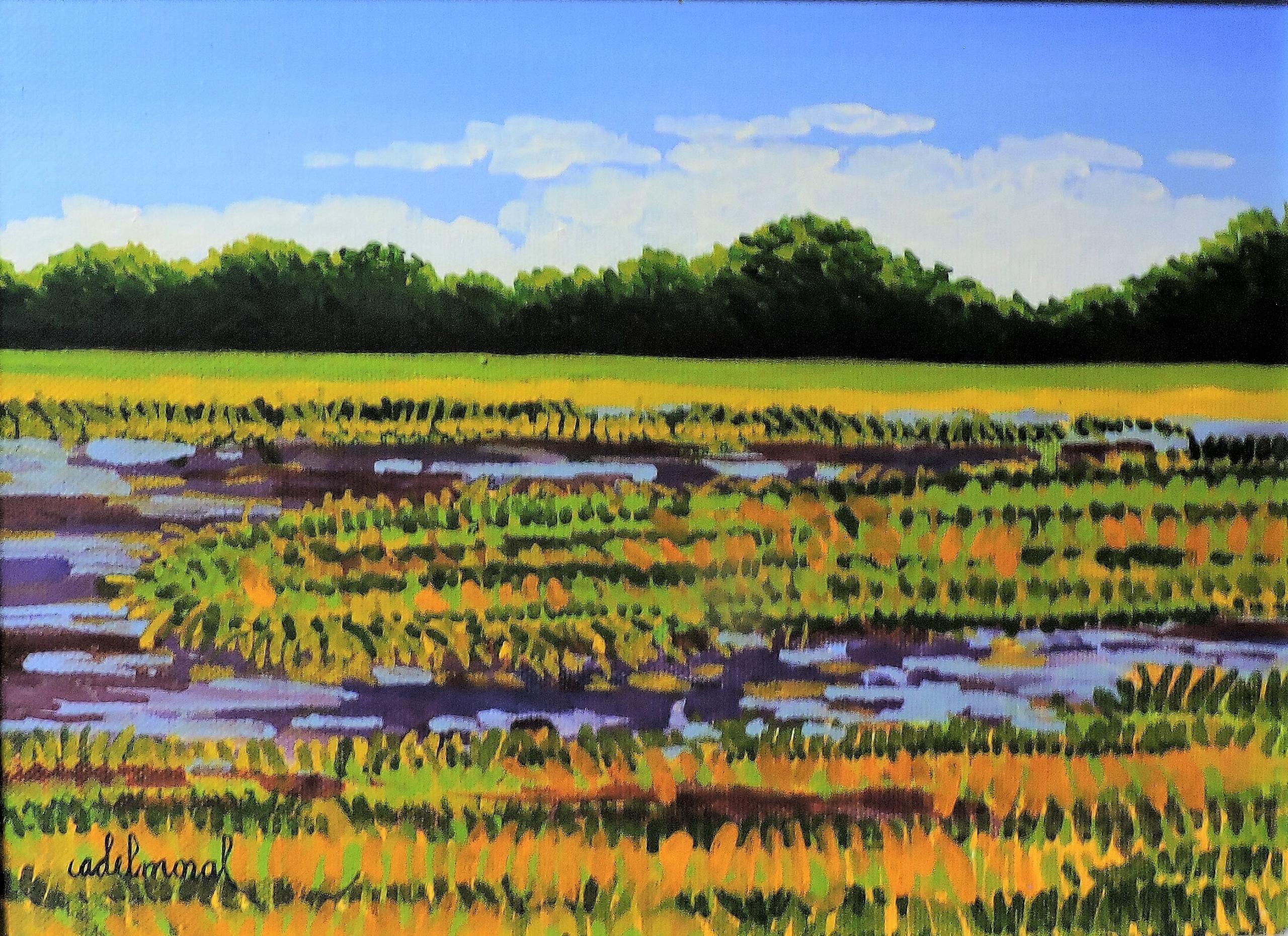 Grassy Field and Stream