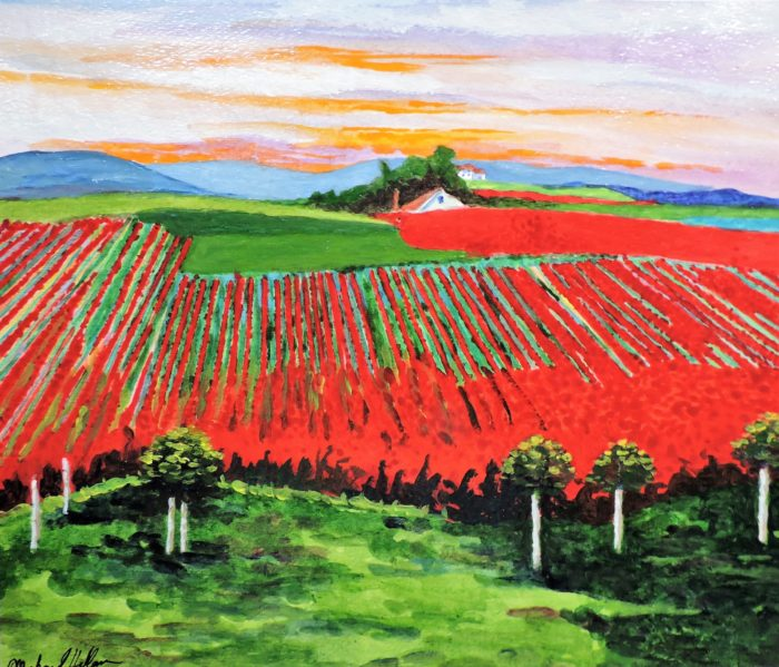 Blooming Fields of Red